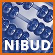 https://www.schuldhulpmaatje-wageningen.nl/wp-content/uploads/2021/03/nibud.png